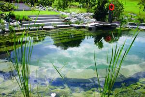 Biyolojik Göletler de Balık Yetiştiriciliği