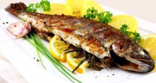 Balıkçı & Balık Restaurant Açmak