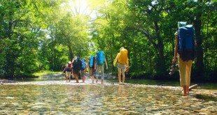 Doğa Turizmi & Ekoturizm Tesisi Kurmak