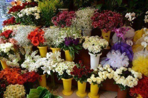 Çiçekçi Açmak