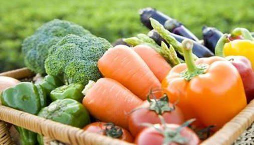 Organik Tarım Yapmak Hakkında