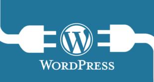 WordPress Sitesi Kurmak