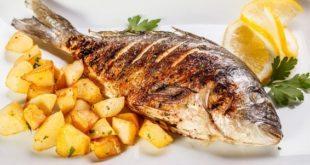 Balık Restaurant Açmak