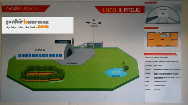 Salma (Özgür) Tavuk Çiftliği Projesi & Maliyeti