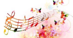 Şarkı Sözleri Ne Kadara Satılır