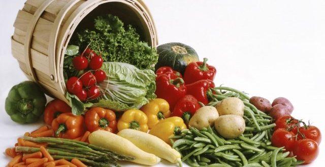 Organik Çiftlik Kurmak
