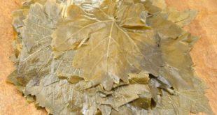 Salamura Asma Yaprağı Üretimi