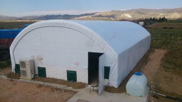 Çadırda Mantar Yetiştiriciliği